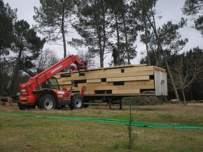 A l'orée du bois : P2080012.JPG