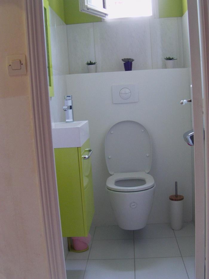 Rénovation d'une salle de bain : wc1.JPG