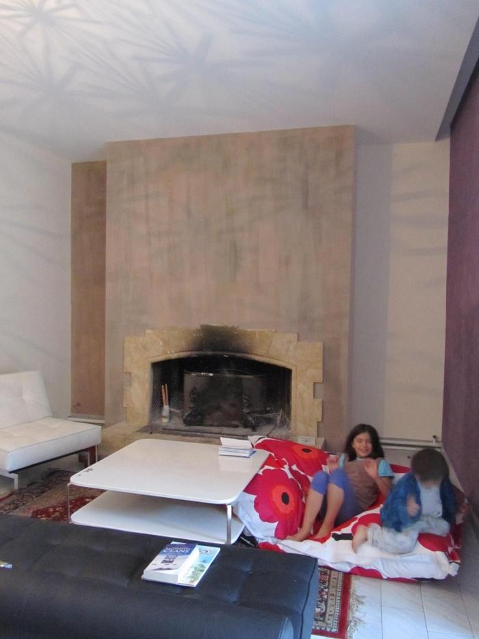 le salon - la cheminée