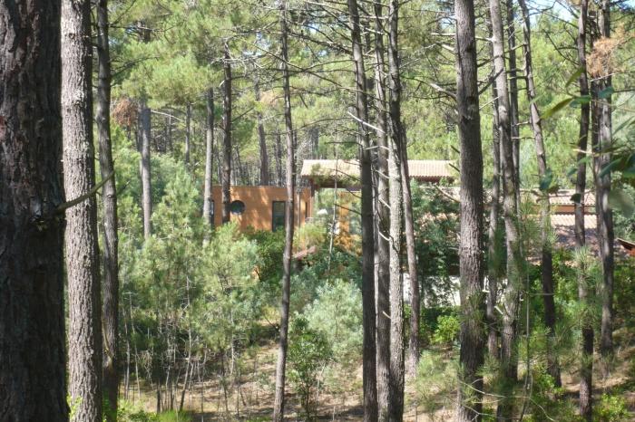 extension d'une habitation : P1070684.JPG