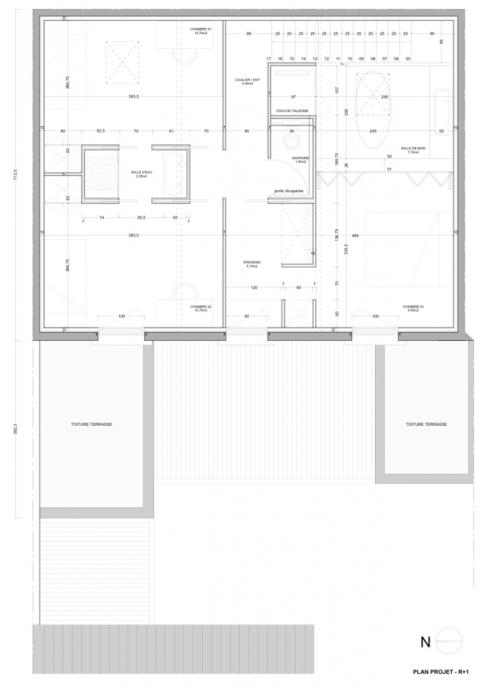 Rénovation échoppe F : Plan projet / R+1