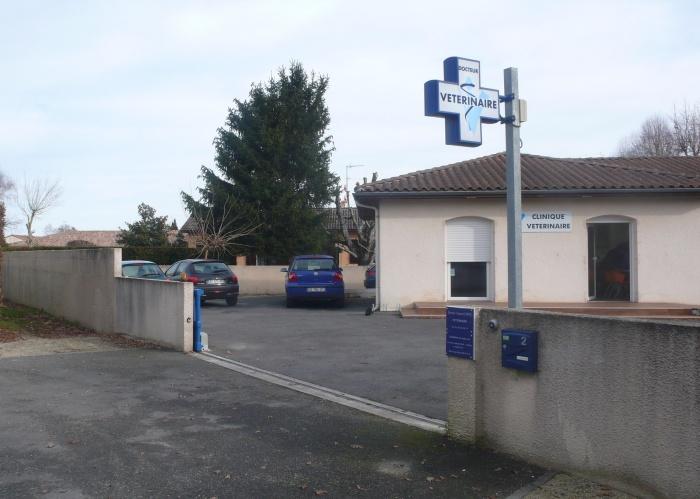 Extension d'une clinique vétérinaire : P1090161