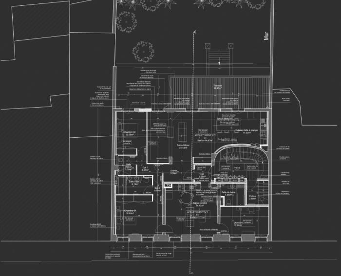 Réhabilitation, surélévation et extension d'un immeuble à Bordeaux : Plan R+1