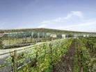 Extension et restructuration du Lycée Vitico-Agricole de Blanquefort (33)